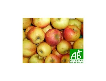 Pommes Jubilé Bio